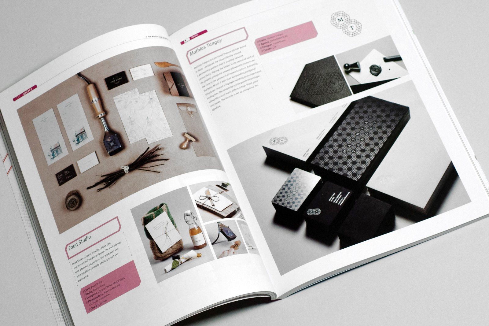 Mathias Tanguy visual identity by Europa Studio published in Chois Gallery, Volume 25, p. 71–72, 2014